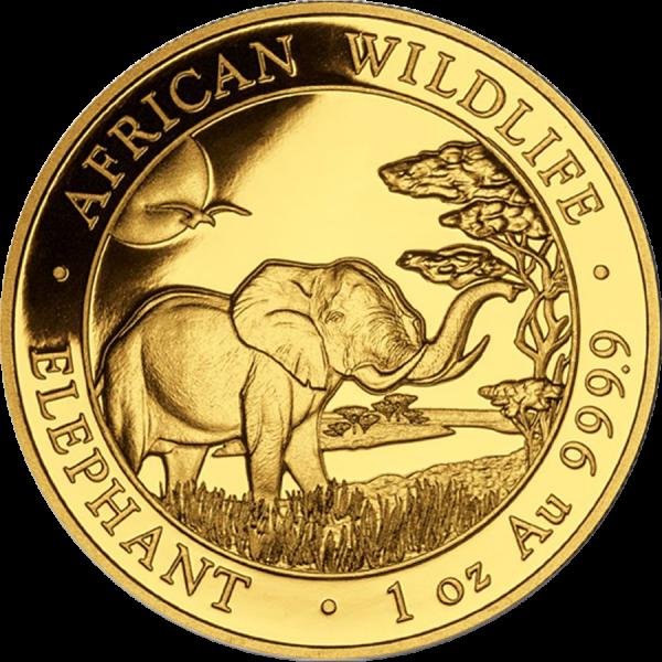 Slon africký  Investiční mince 1 Oz